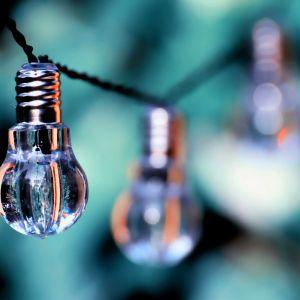 Light bulbs green background